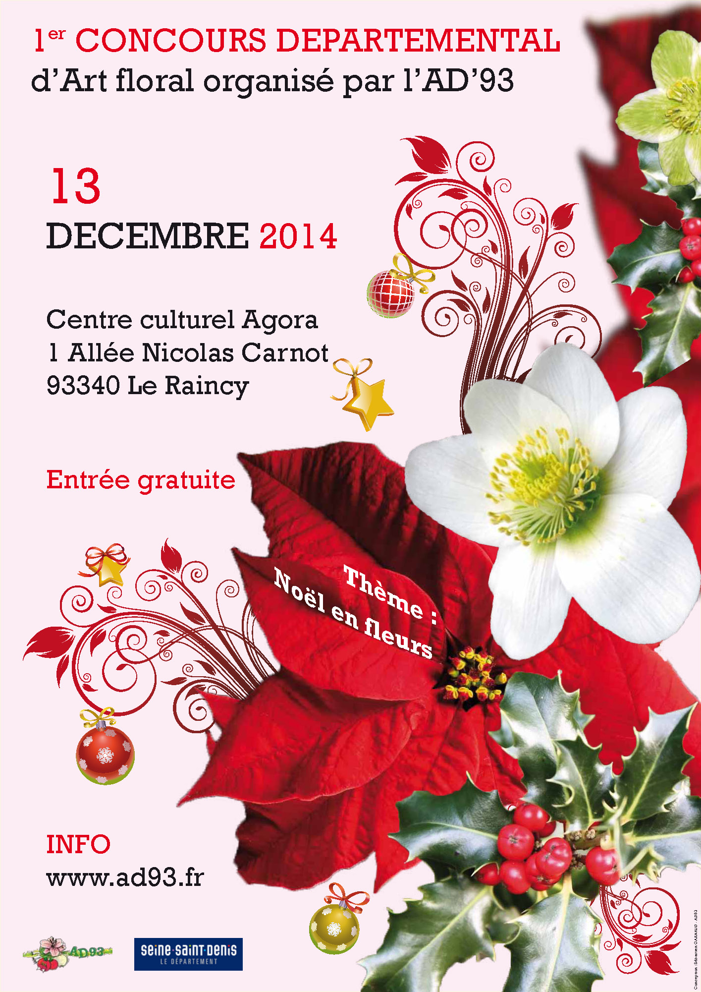 concours_AD93_rainncy2014_diffusion